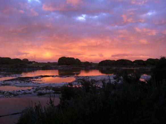 Sunrise over Bickley Swamp